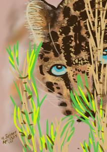 Leopard.  April 13, 2015