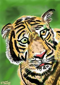 Tiger May 28, 2015